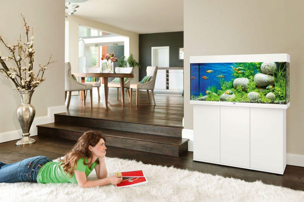 A Juwel Rio fish tank