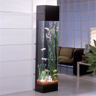 A tall thin vertical fish tank